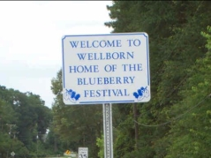 Welcome to Wellborn!